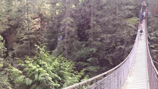 Lynn Valley Suspension Bridge extend 157 feet and is 164 feet up above the ground
